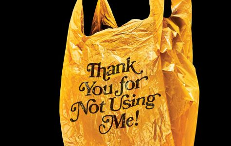 Suffolk County Announces New Five-Cent Fee on Plastic Bags